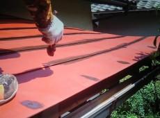 玄関上板金塗装工事👷